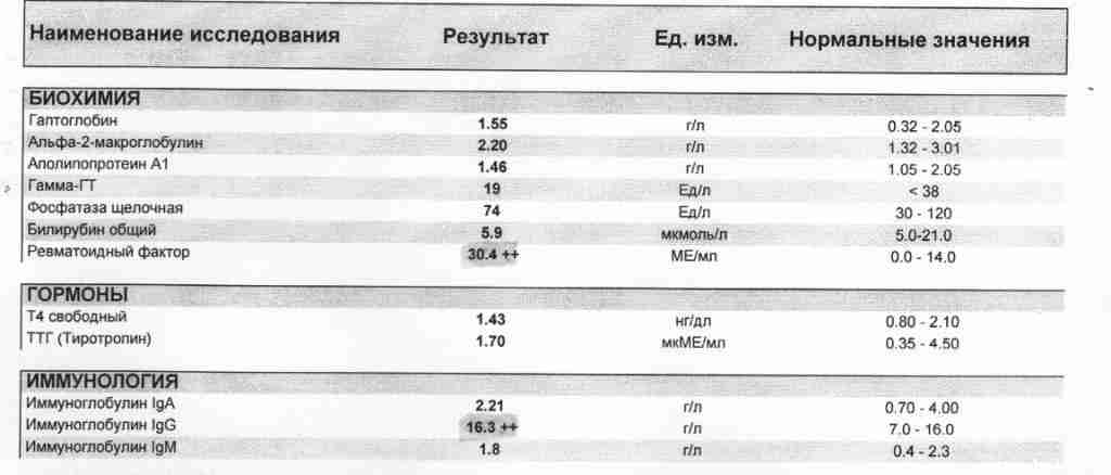 Аццп (анализ крови): что это? норма при артрите, расшифровка