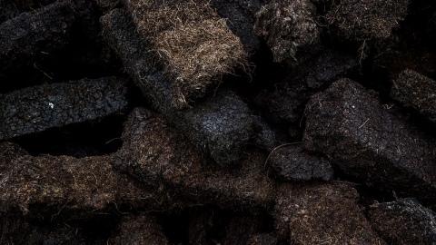 Верховой и низинный торф (14 фото): отличия и применение, кислотность, особенности нейтрализованного верхового торфа. какой лучше для рассады?