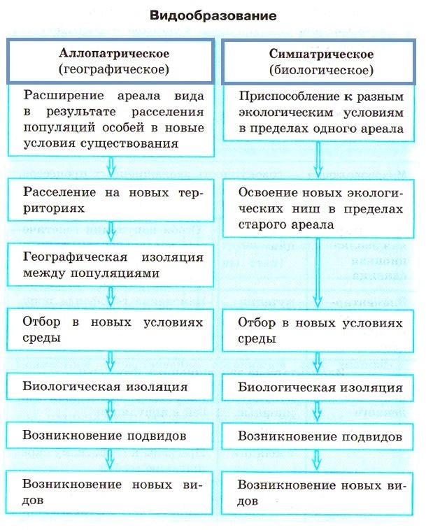 Макро- и микроэволюция. характеристика механизмов и основных результатов.