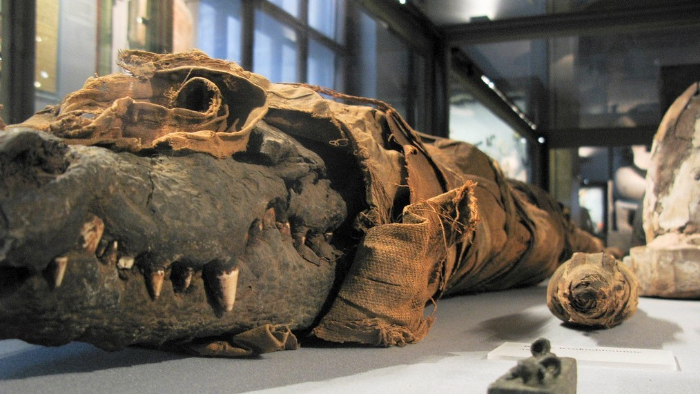Что такое мумия