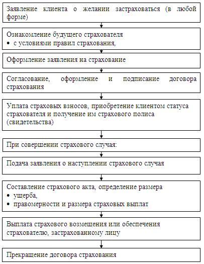 Договор страхования: виды, условия, стороны, как правильно оформить