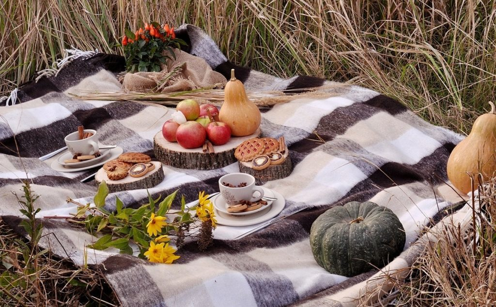 Как правильно собраться на пикник: инструкция на все случаи жизни, что купить, что приготовить, можно ли пить на пикнике - афиша daily