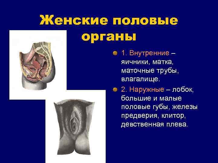 Восстановление девственности — что нужно знать, если вы решили сделать гименопластику