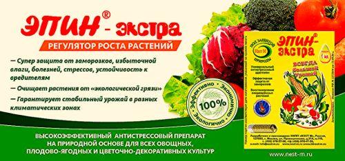 «эпин» — стимулятор роста растений. описание и способы применения — ботаничка.ru