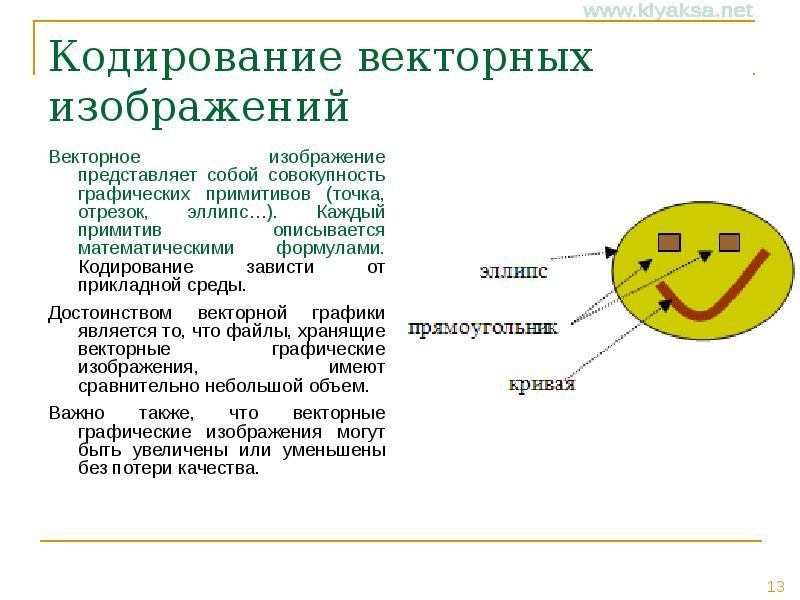 Компьютерная графика и области ее применения. понятие растровой и векторной графики