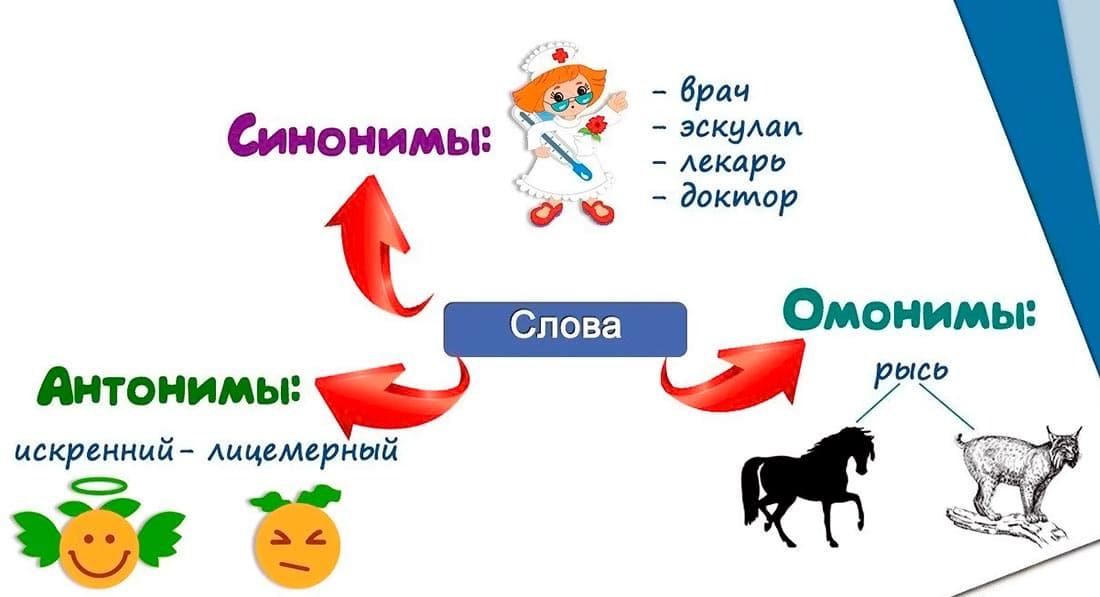 Что такое синонимы: примеры синонимов