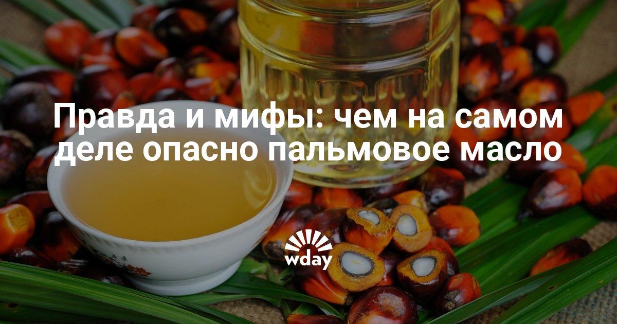 Пальмовое масло — википедия. что такое пальмовое масло