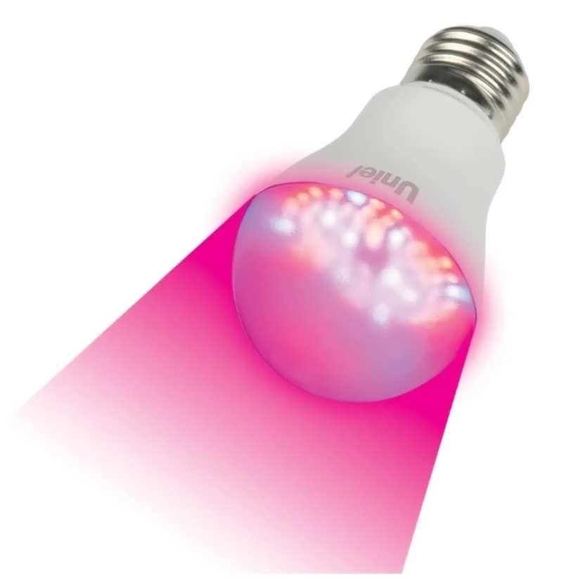 Характеристика и преимущества филаментных светодиодных ламп