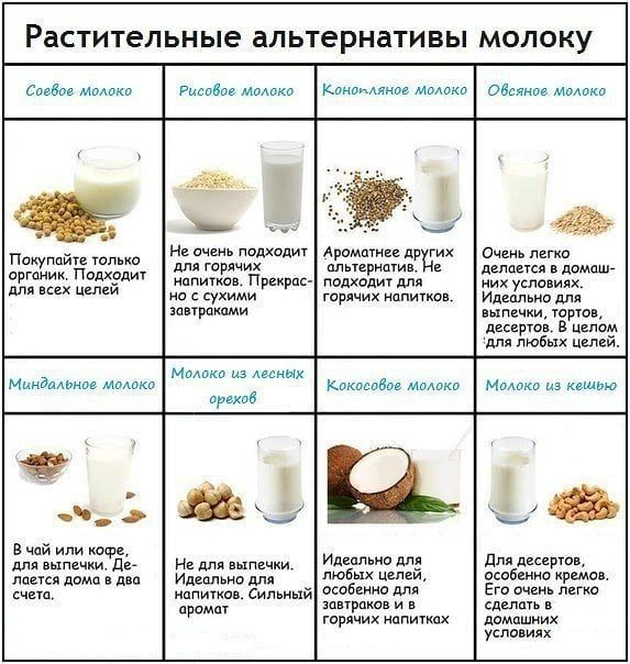 Растительное молоко: можно ли им заменить коровье