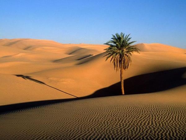 Пустыня атакама. фото, достопримечательности, интересные факты