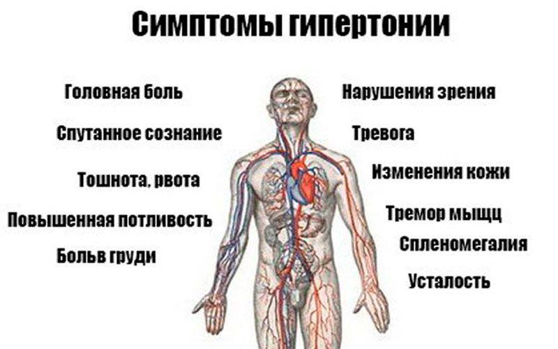 Гипертензия - что это за заболевание, причины возникновения, симптомы, диагностика, степени и лечение