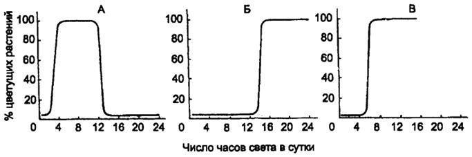 45.фотопериодизм. эволюционные аспекты фотопериодизма. значение света, темноты, их продолжительности и чередования фаз для жизнедеятельности.