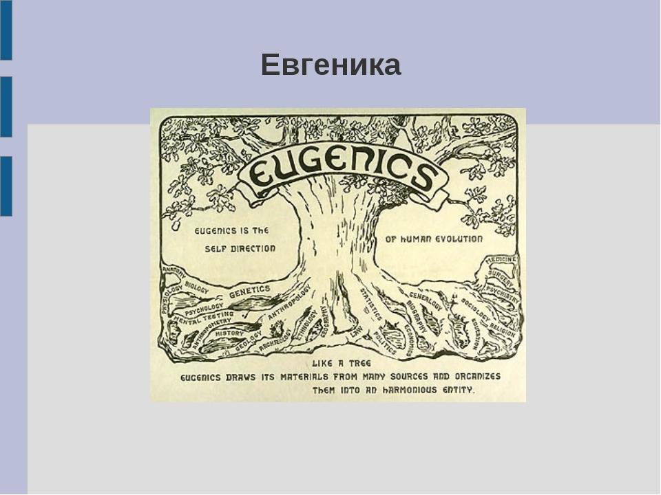 Евгеника