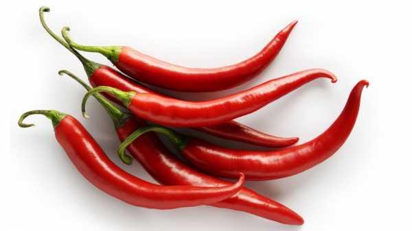 Болгарский перец - полезные свойства и секреты приготовления