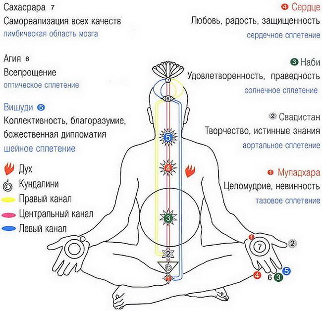 Божественная энергия кундалини – все, что нужно о ней знать