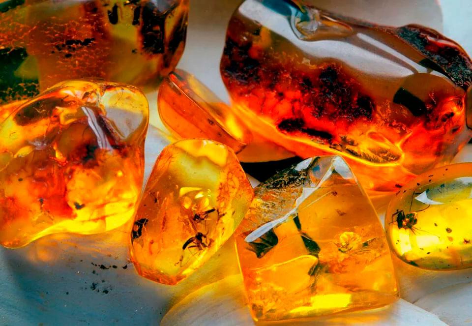 Камень янтарь: свойства, значение, происхождение и цена. магические свойства янтаря :: syl.ru