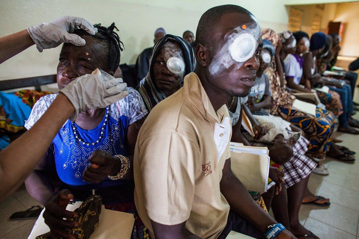 Вирус эбола - симптомы и лечение, как передается лихорадка и последние новости о вакцине