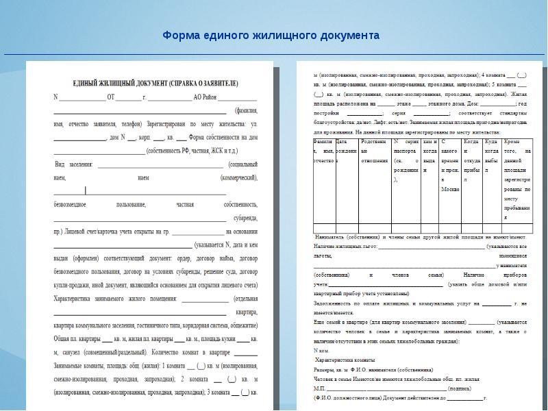 Где взять единый жилищный документ. оформление единого жилищного документа