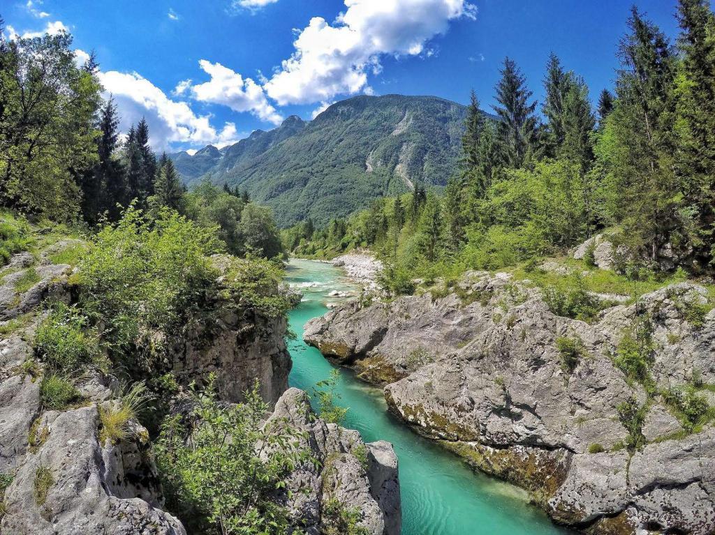Долина реки википедия