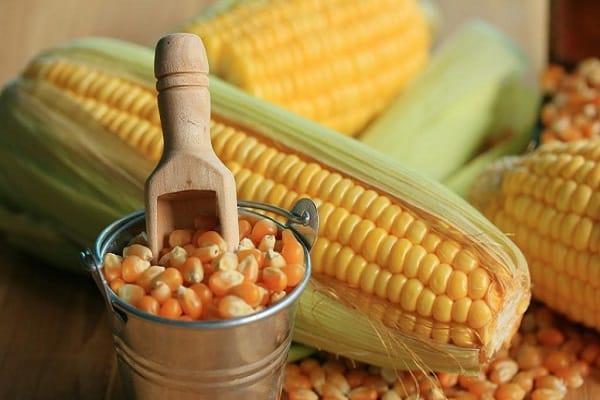 Дебетовая карта кукуруза евросети, как получить дебетовую карту кукуруза
