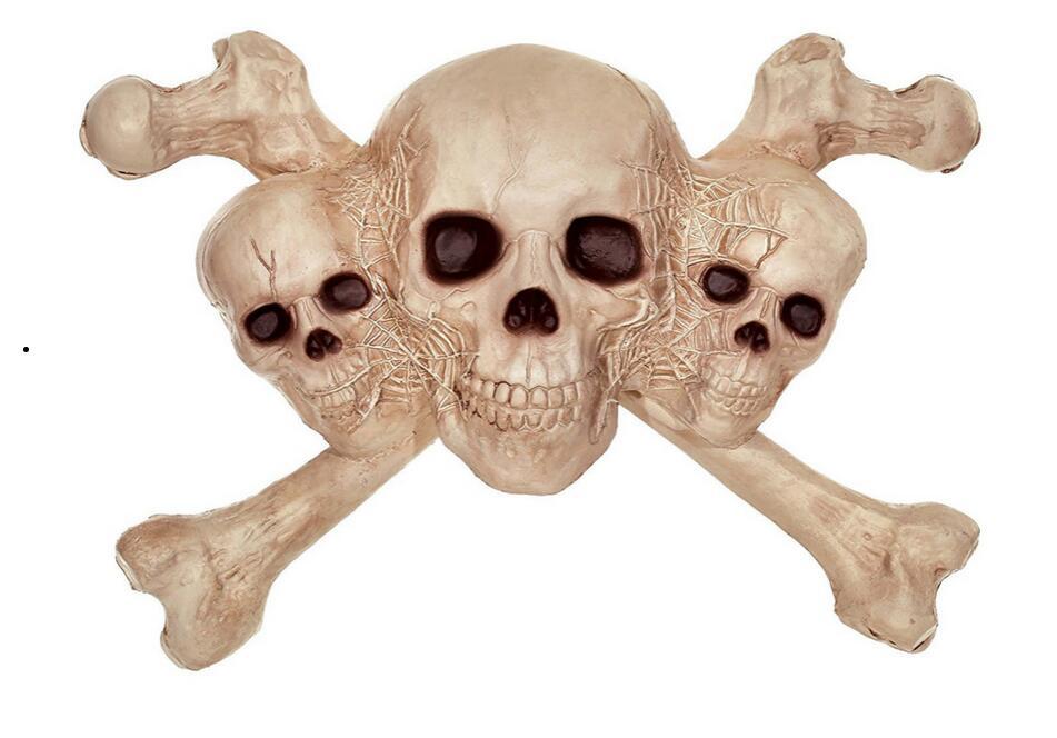 Из чего состоят кости человека