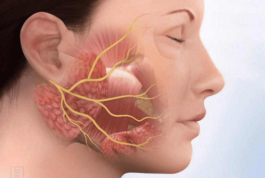 Неврит - симптомы и лечение болезни