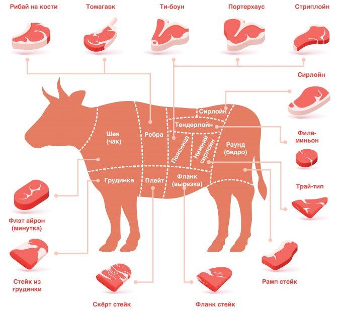 Огузок говяжий: что это такое, фото, свойства и рецепты блюд