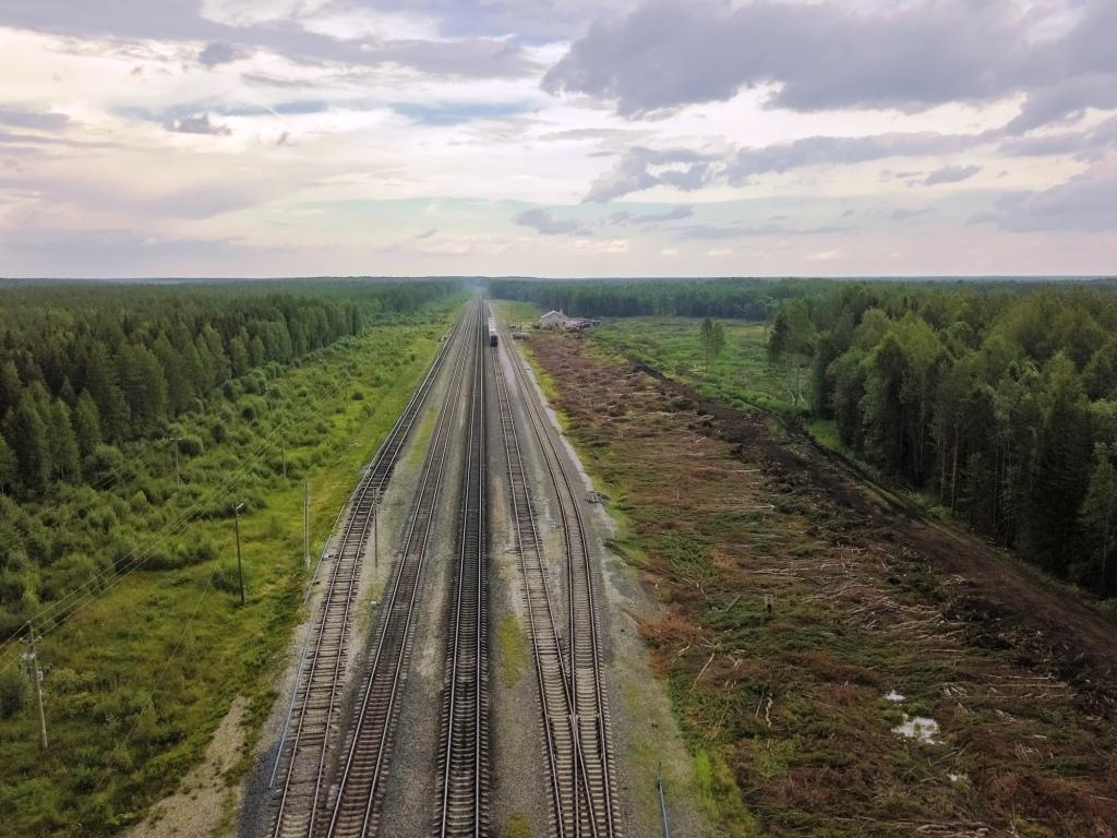 Ситуация вокруг строительства полигона на станции шиес в архангельской области