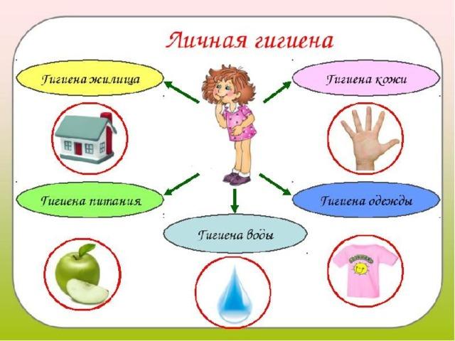 § 11. правила личной гигиены