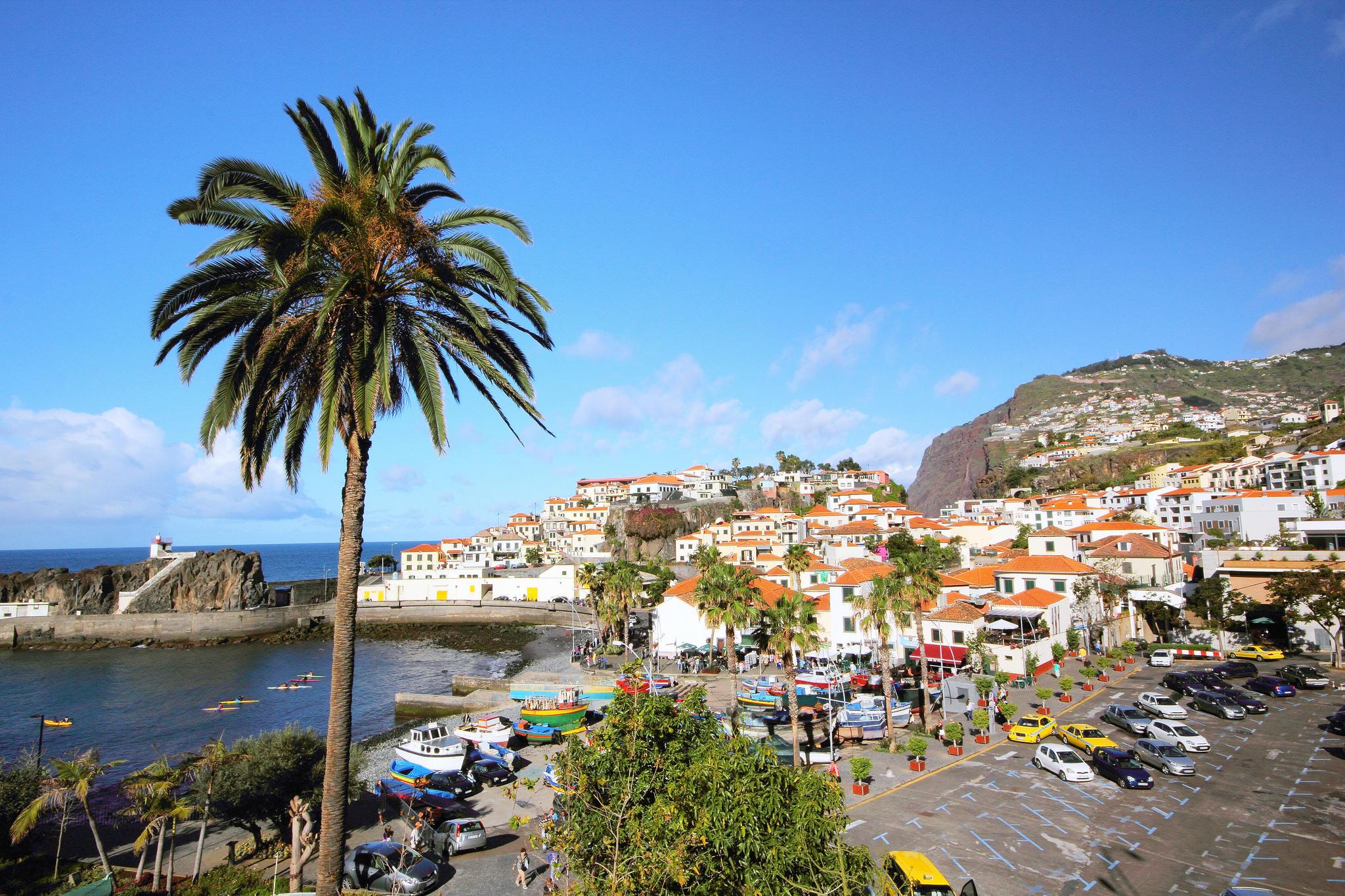 Мадейра — википедия. что такое мадейра