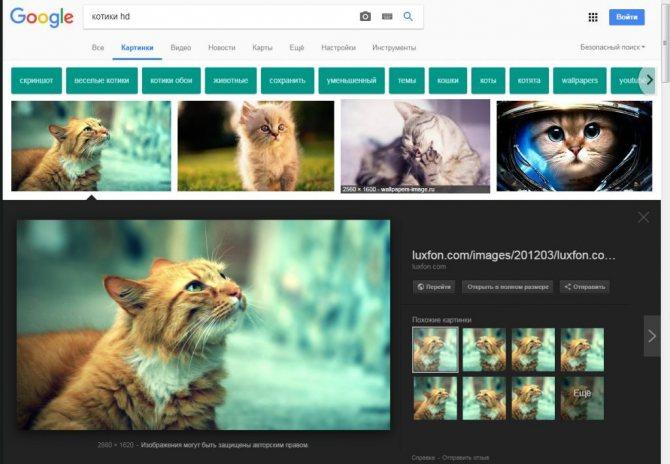Ищем и находим с помощью картинок google