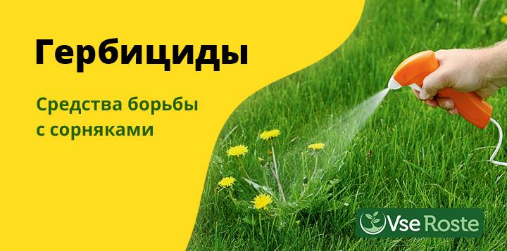 Пестициды: вред для организма человека, как избежать отравления