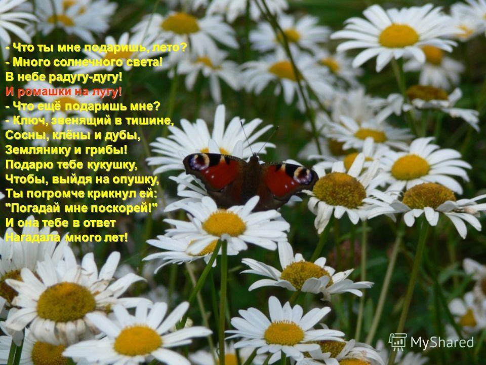 Что мы знаем о лете (признаки лета, летние месяцы)