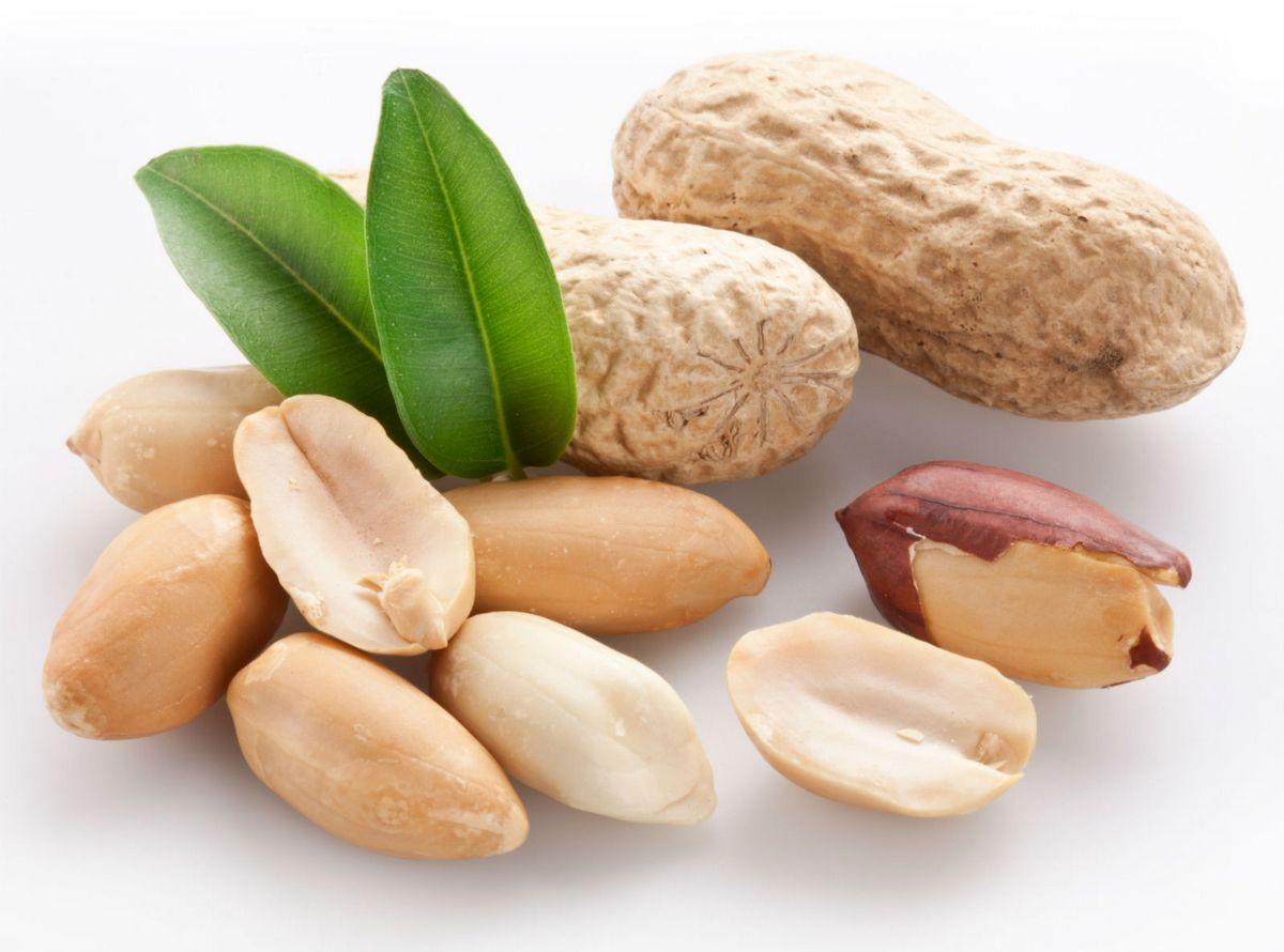 Что такое лектины и в каких продуктах они содержатся?