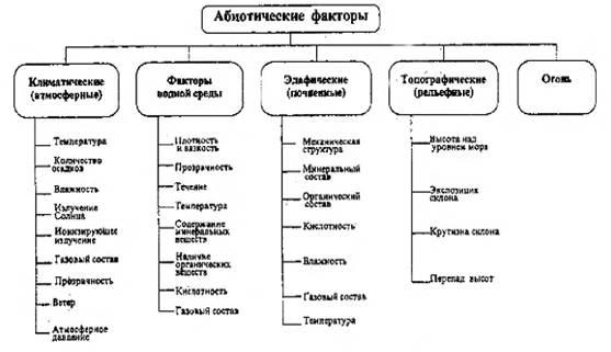 Характеристика абиотических факторов среды