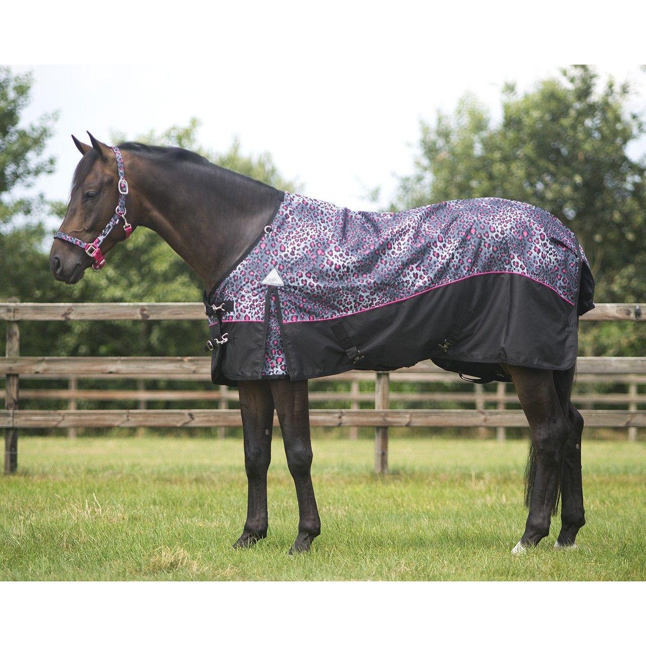 Комфортно и практично: шьём попону для лошади своими руками