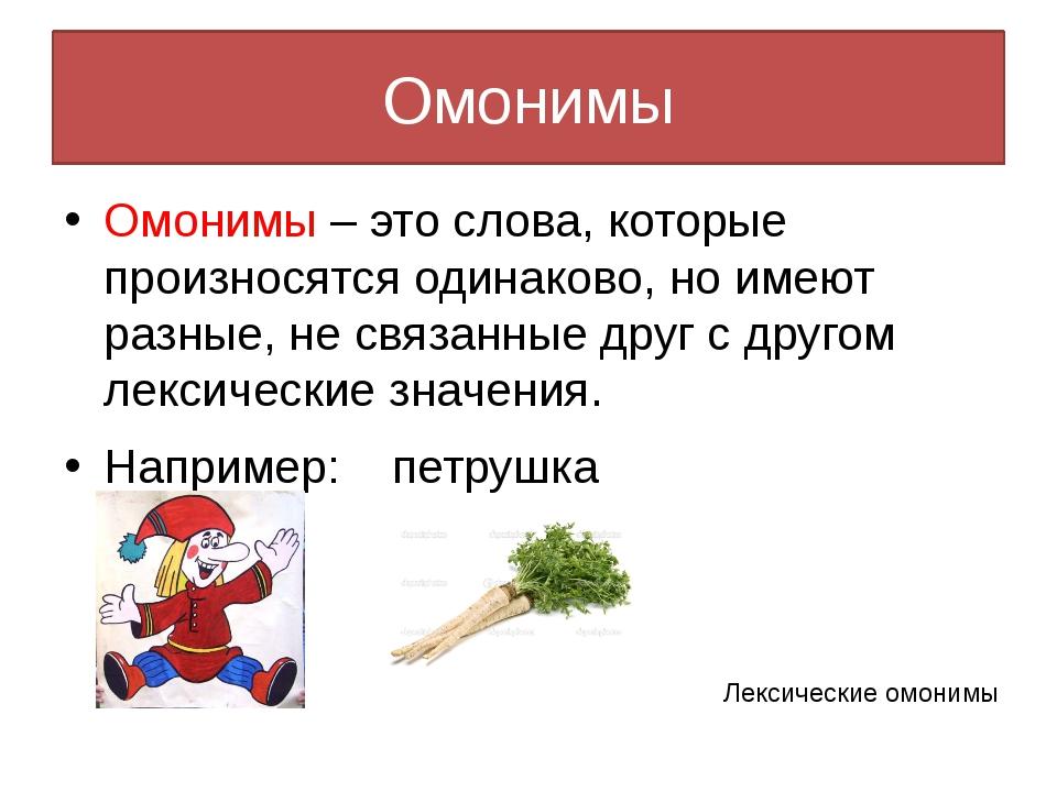 Что такое омонимы в русском языке – примеры