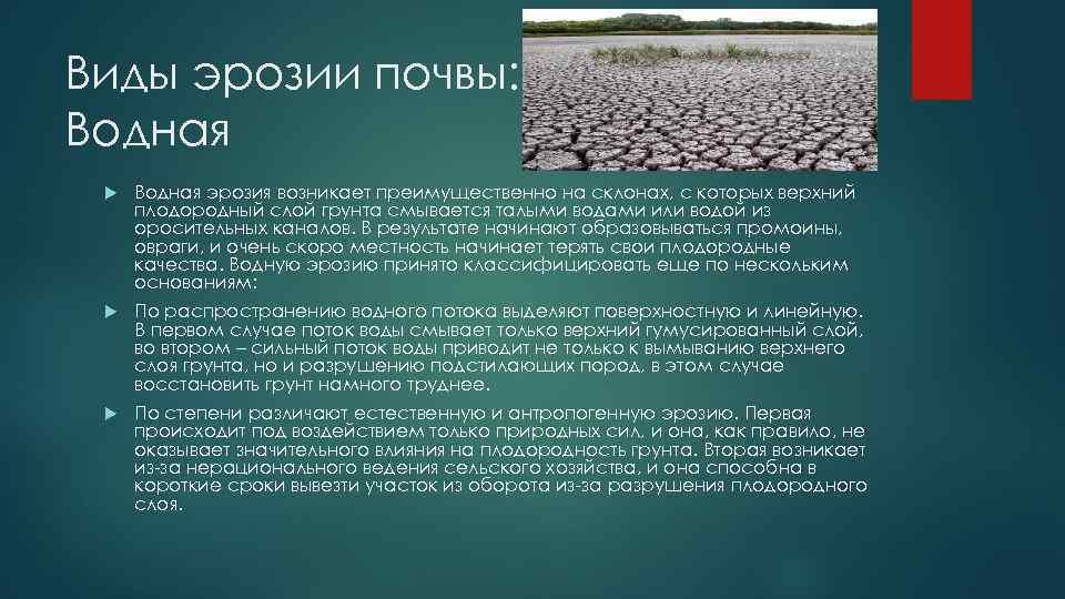 Эрозия почвы - это... что такое эрозия почвы?