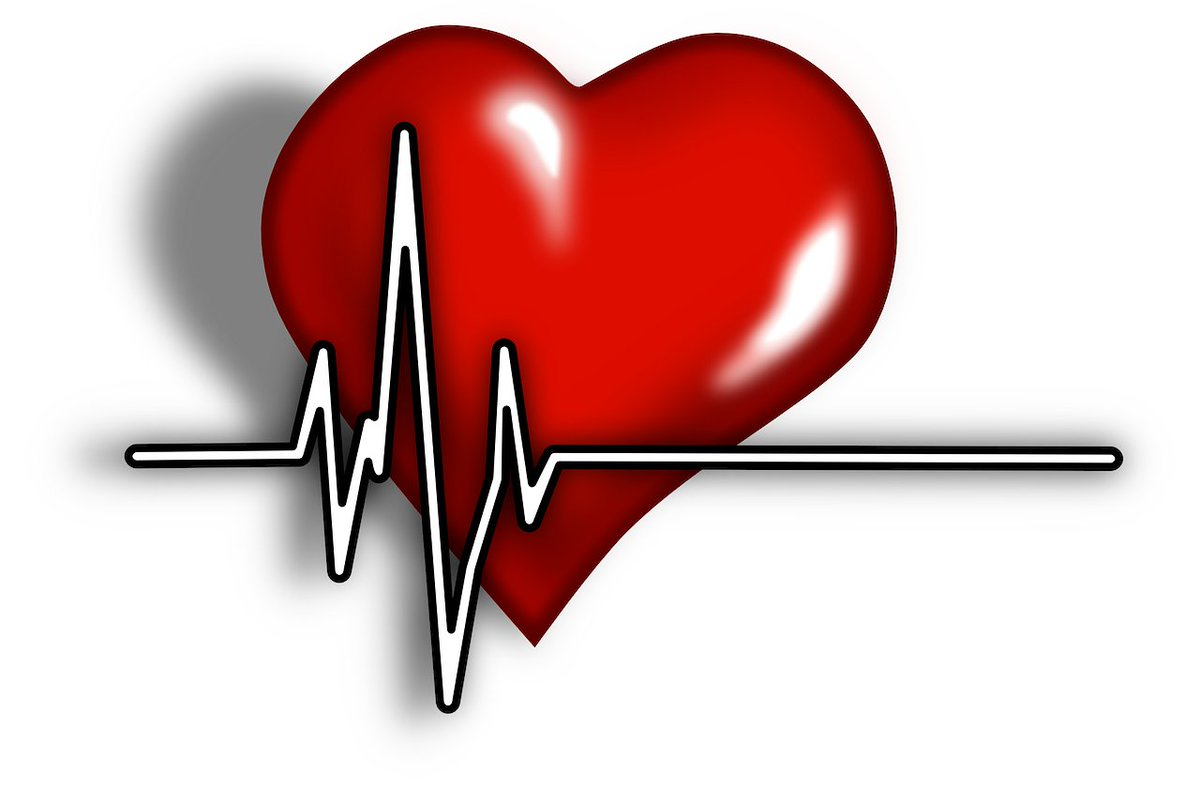 Синусовая брадикардия лечение народными средствами | лечение сердца