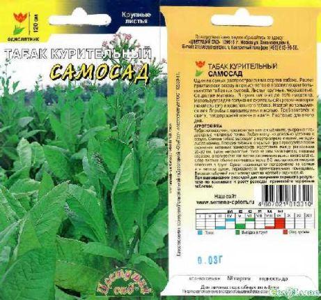 Что такое табак, его происхождение, выращивание и применение