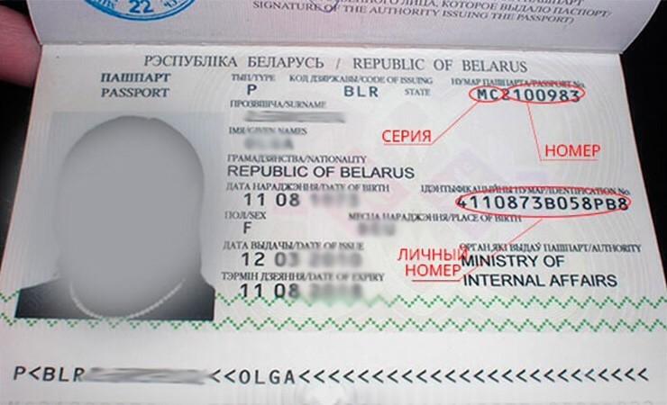 Где найти номер и серию паспорта рф - как они выглядят