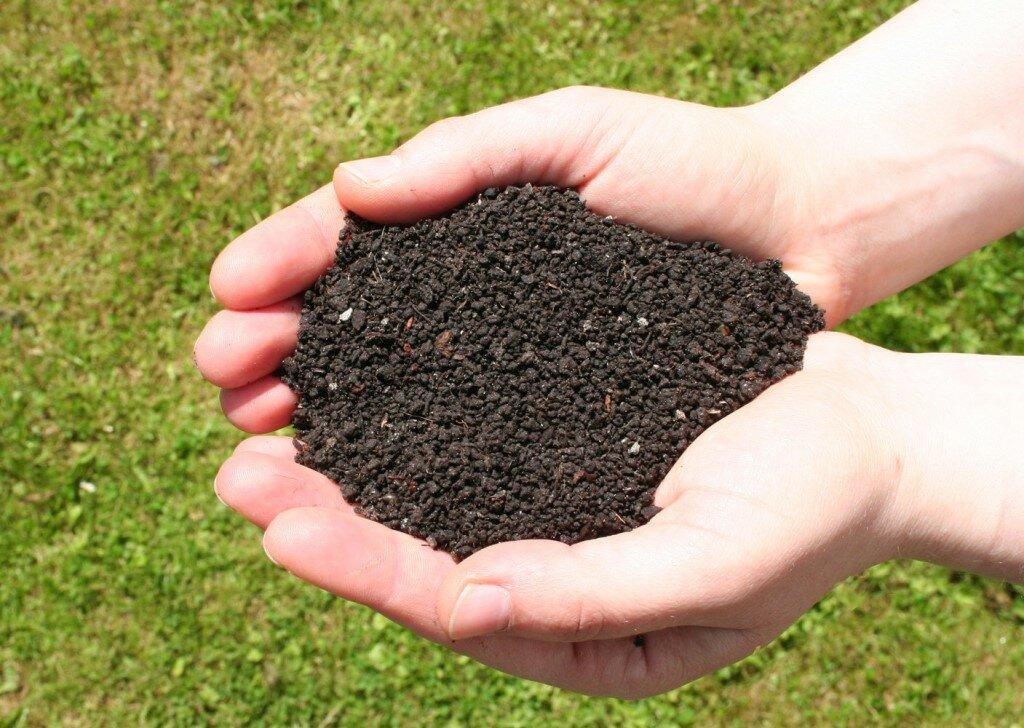 Что такое биогумус: эффективность, инструкции по применению удобрения