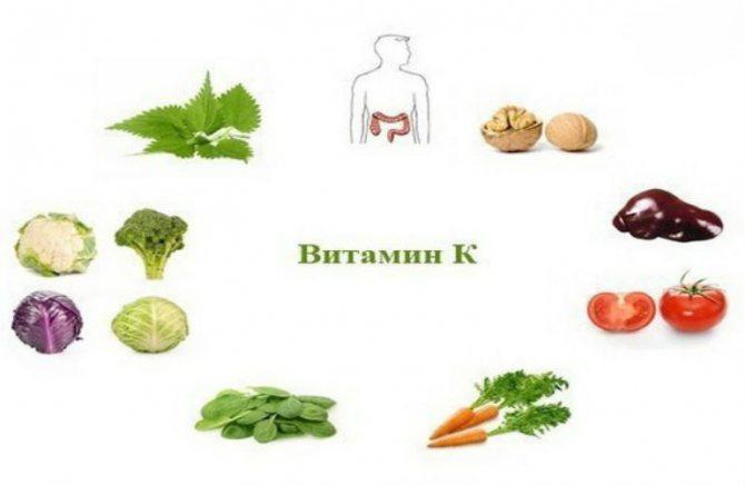 Витамин к в каких продуктах содержится, показания к применению