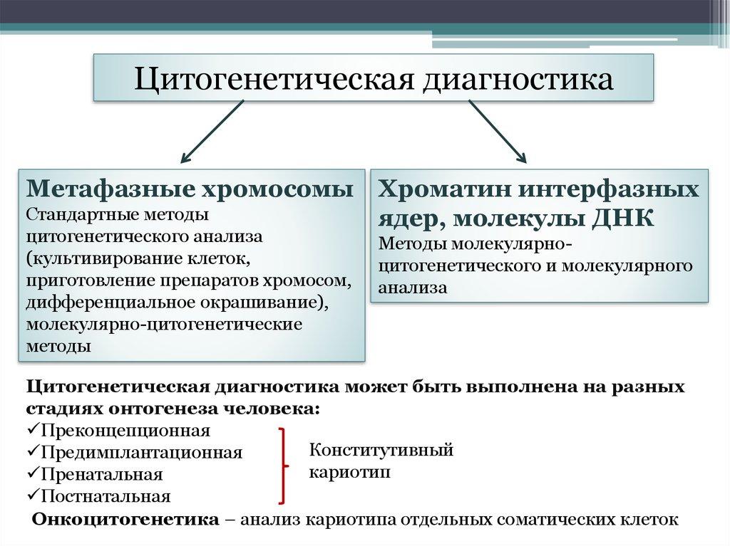 Анализ кариограммы и описание кариотипа человека - что такое, определение кариотипа, хромосомы
