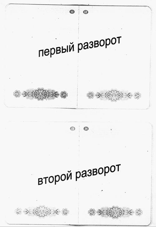 Содержание страниц загранпаспорта |