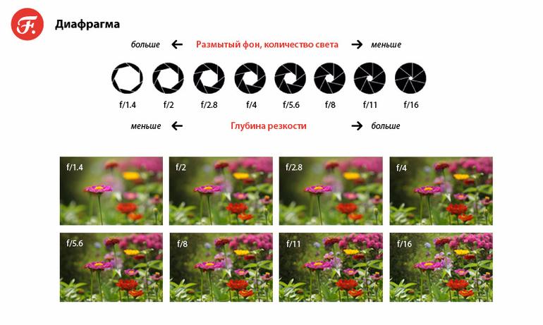 Что такое диафрагма фотоаппарата? принцип действия и настройка диафрагмы