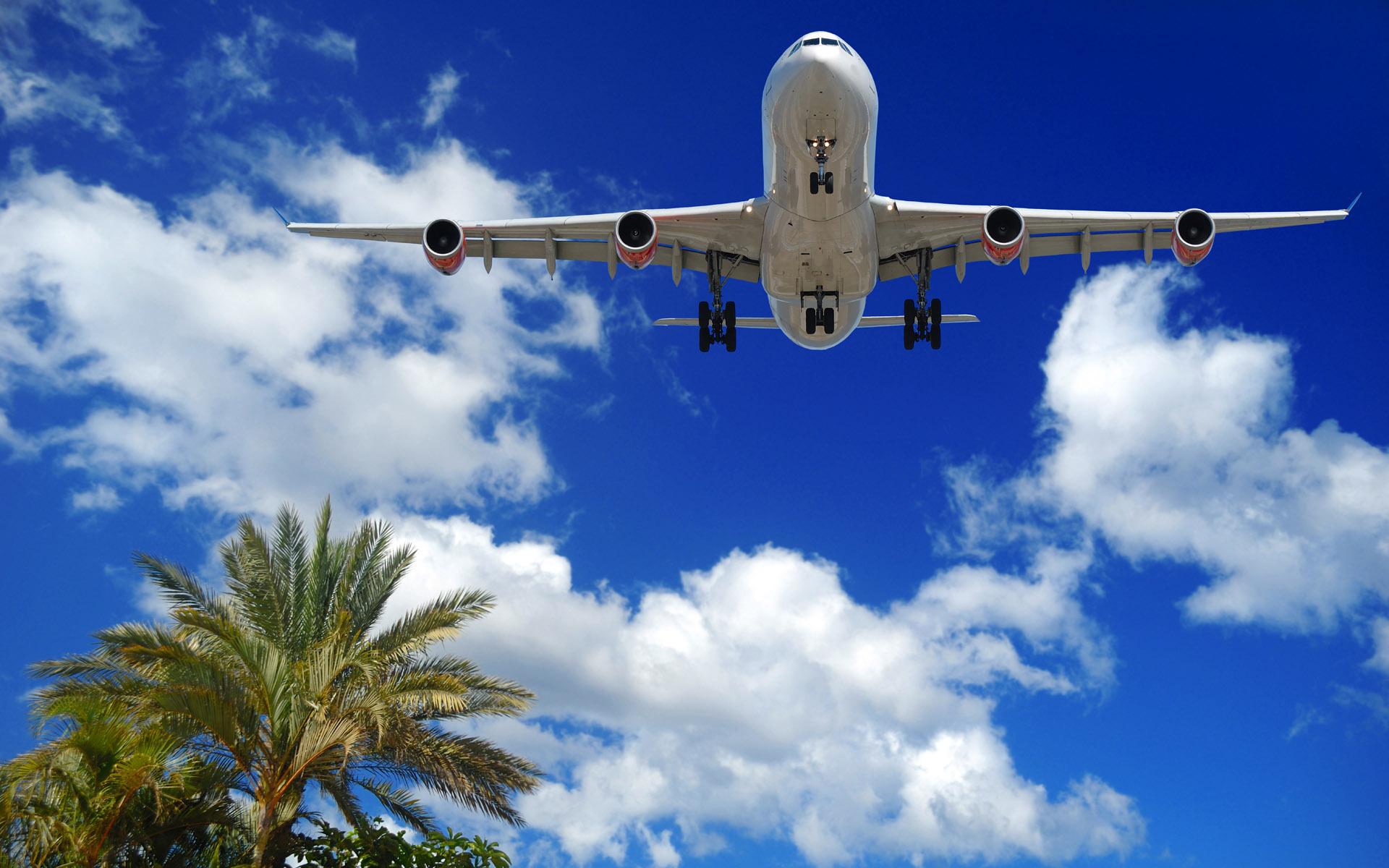 Как отличить чартерный рейс от регулярного