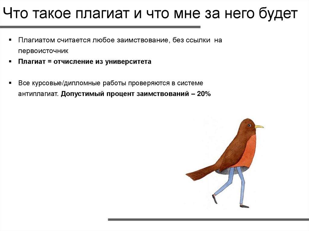 Что такое плагиат - виды, формы, как его избежать