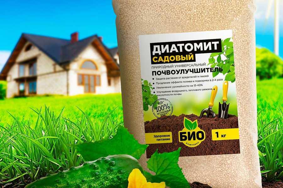 Диатомит — описание ингредиента, инструкция по применению, показания и противопоказания
