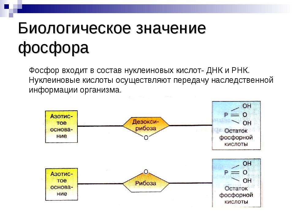 Фосфор — википедия. что такое фосфор